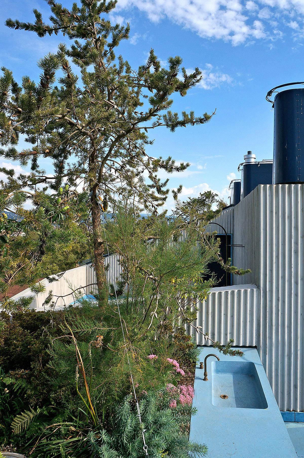 Hohes Haus West: Aussenküche mit Dachgarten