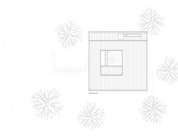 EFH_Giovanelli_1103-Publikationsplan-Dach_1200_neu